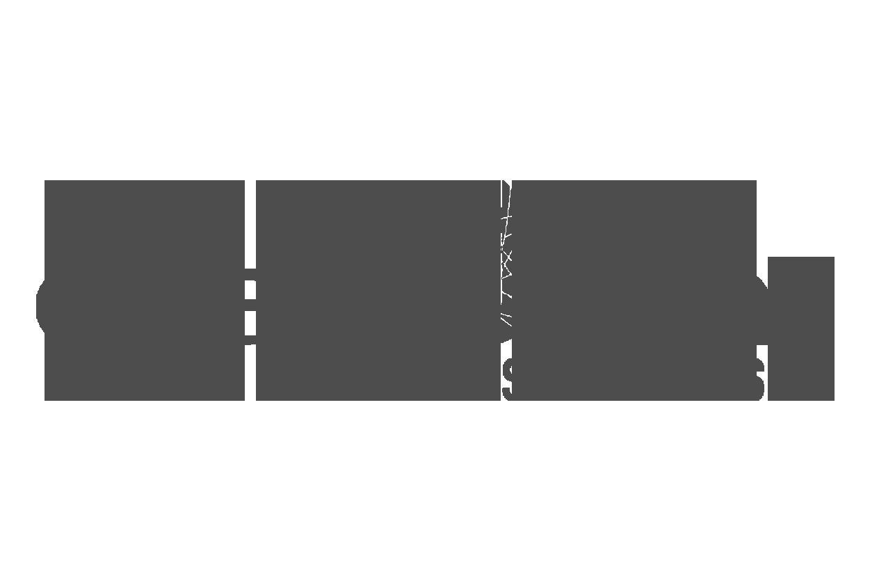 direct_trans_logo
