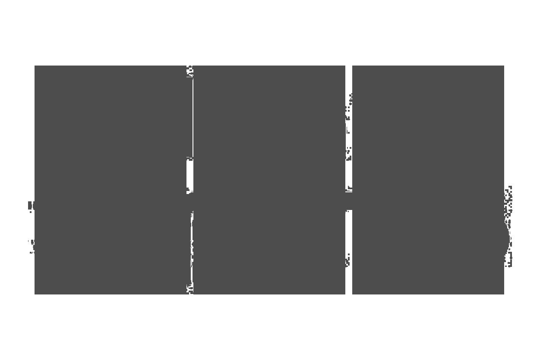 palmaret_sports_logo