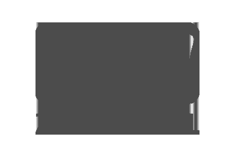 zamit_digital_logo